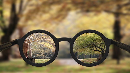 Seeing the World Through the Lens of your Core Values Index Profile